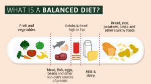 what is balanced diet